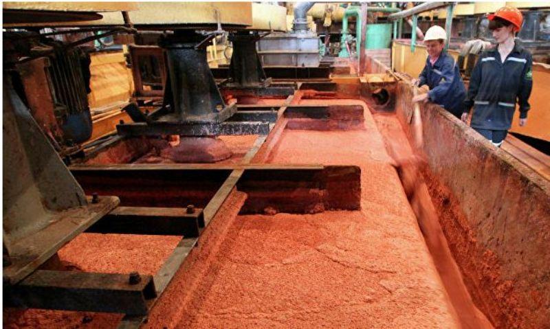 «Белорусская калийная компания» (БКК) поставит в Китай 1,5 млн. тонн калия в 2017-2019 годах