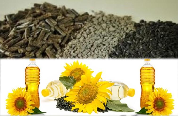 З початку року Україна експортувала в Китай >150 тис. тонн соняшникового шроту