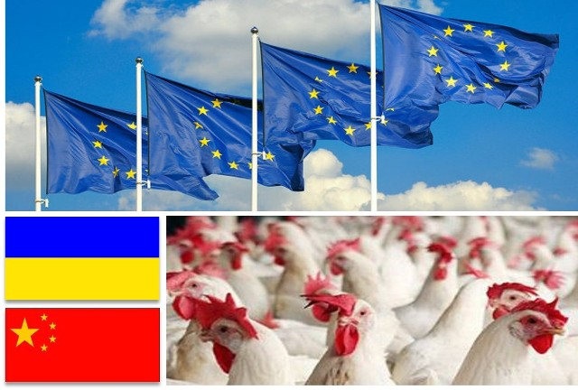 Україна і Китай лідери поставок мяса курятини до Євросоюзу