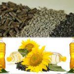 Шрот соняшниковий, соняшникова олія, Україна Китай