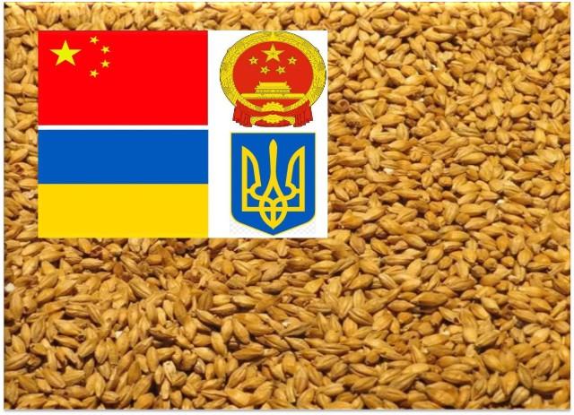 Китай збільшив імпорт ячменю з України на 163%