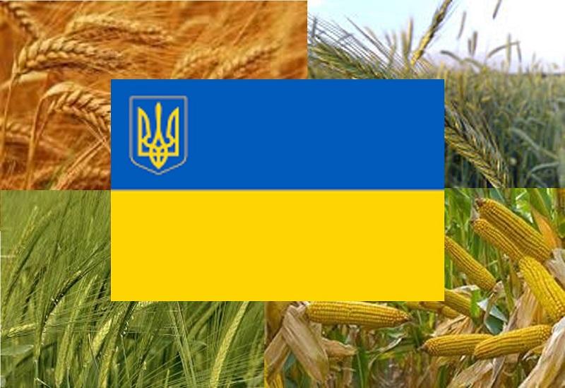 У 2018/2019 МР Україна експортувала рекордний обсяг зернових