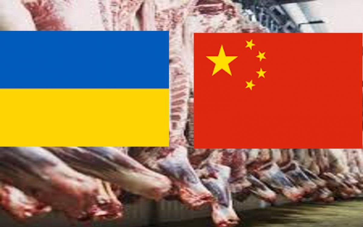 Експорт яловичини з України в Китай